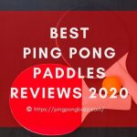 Best Ping Pong Paddle [2021] - Buying Guide & Reviews