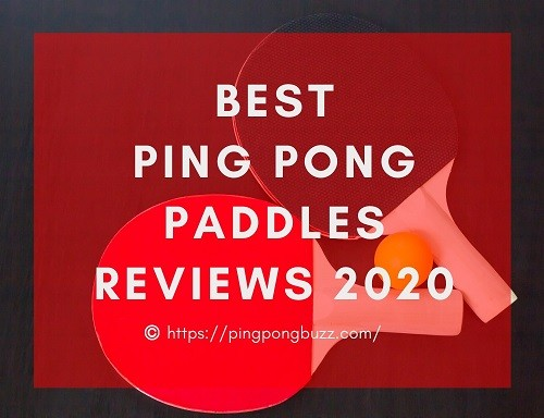Best Ping Pong Paddle Reviews 2020 - Buying Guide & Top Rated