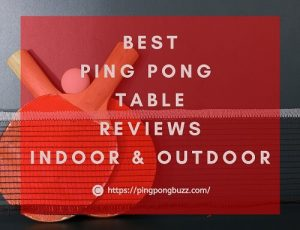 Best Ping Pong Table 2021 - Outdoor & Indoor Reviews