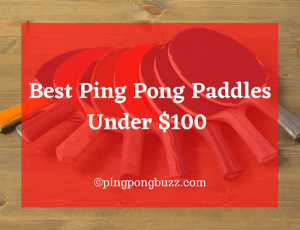 Best Ping Pong Paddle Under $100 2021 - Ping Pong Buzz