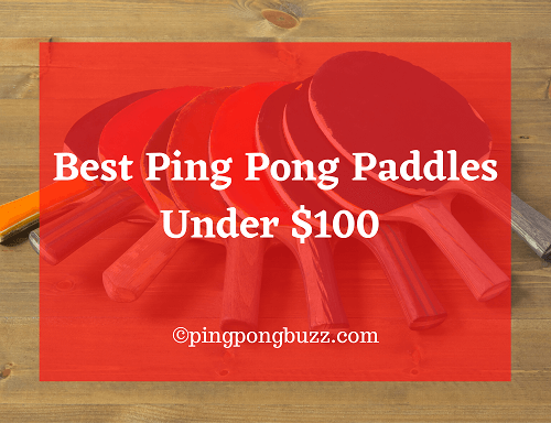 Best Ping Pong Paddles Under $100 - Ping Pong Buzz