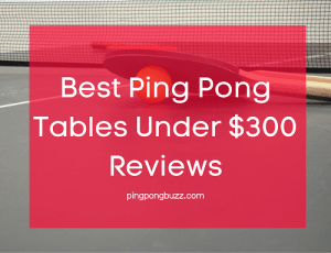 Best Ping Pong Tables Under $300 Reviews 2021