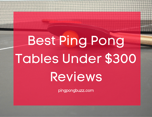 Best Ping Pong Tables Under $300 Reviews