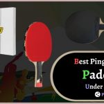 Best Ping Pong Paddle Under $100 [2021] - Top Picks