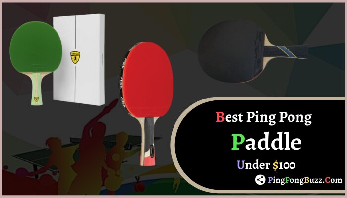 Best Ping Pong Paddle Under $100 reviews in 2021