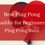 7 Best Ping Pong Paddle for Beginners & Intermediates (Budget Racket)