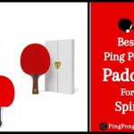 Best Ping Pong Paddle for Spin - Flexible & Lightweight Bats/Racquets 2021