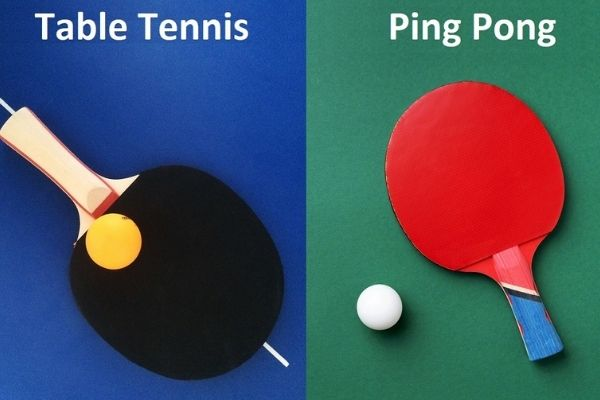 what is ping pong in table tennis