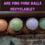 Are Ping Pong Balls Recyclable? | Facts You Must Know 2021