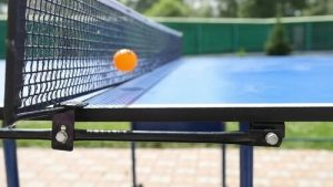 Ball Hit The Net In Ping Pong