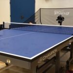 Best Wood For Ping Pong Table?