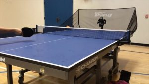 Best Wood For Ping Pong Table