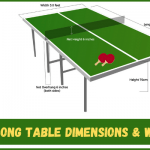How Much Does a Ping Pong Table Weigh? | Dimensions & Weight