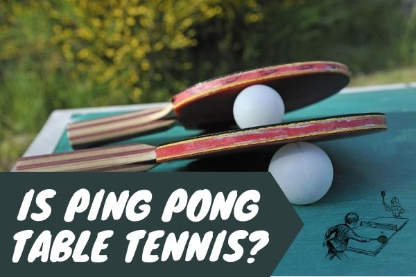 Is Ping Pong Table Tennis