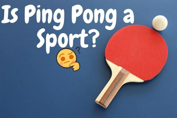 is ping pong a sport